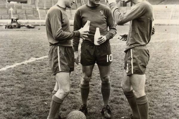 1967-chelsea-football-team-tdc
