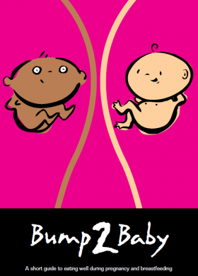 Bump to Baby 2017